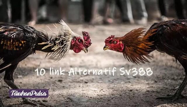 Link-Alternatif-Sv388-Terupdate-2020