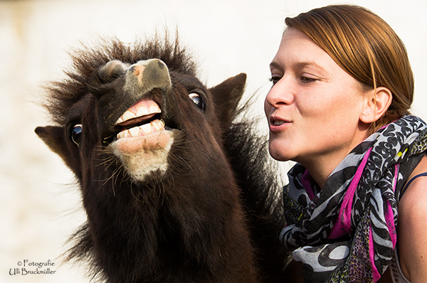 Lob Pferdetraining