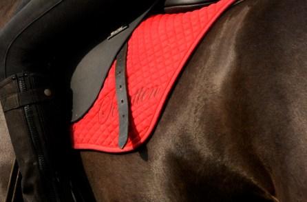 Farbe Rot Pferd