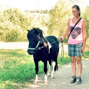 Rosa Pony