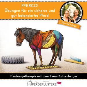 Pfergo Ergotherapie für Pferde