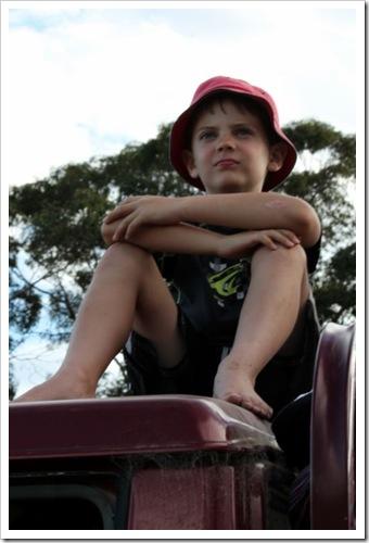 Day 62 - My Little Man on Australia Day
