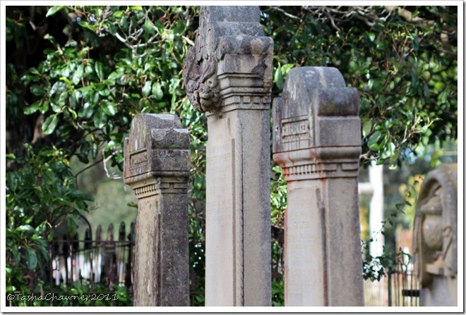 Day 99 - Old Gravestones at Walcha Cemetery