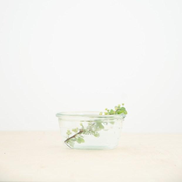 weck-jar-290-ml