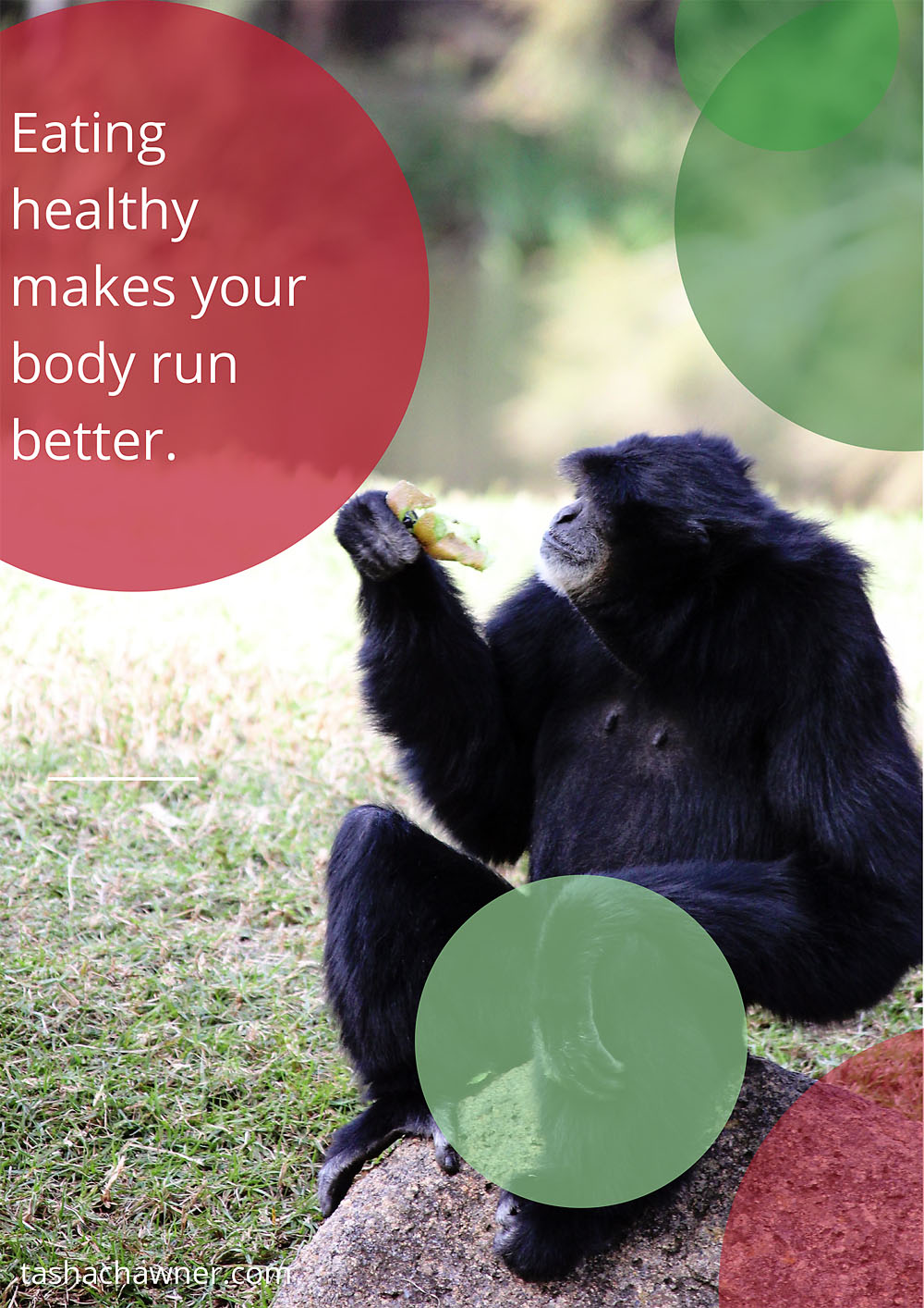 eat healthy poster