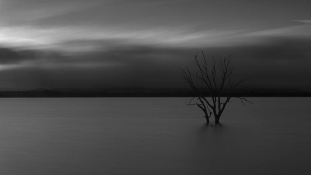 still-lake