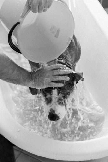one last rinse