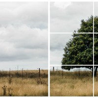 5 easy composition rules to improve your photography: #1 rule of thirds