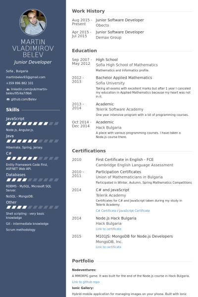 best developer resume example