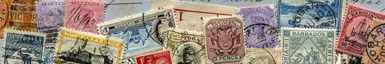 tasmanian-stamp-council-3
