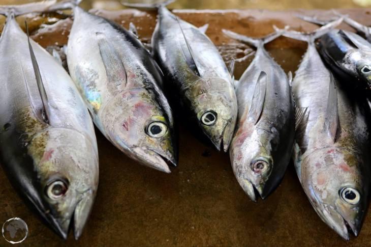 Trinidad & Tobago Travel Guide: Fish market, Tobago
