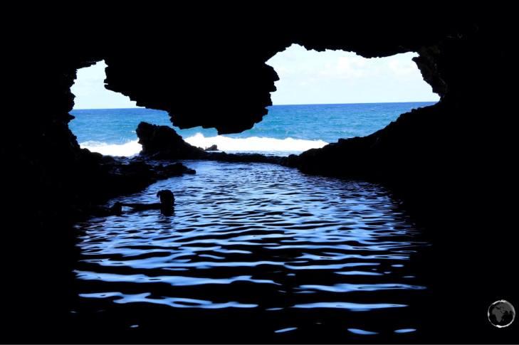 Animal flower cave.