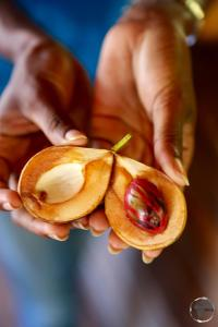 The island's number one export - nutmeg