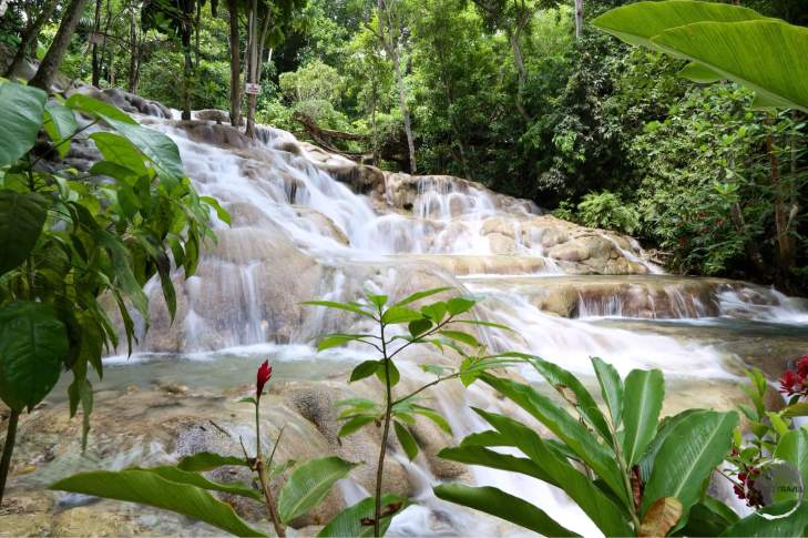 Dunn's river waterfalls.