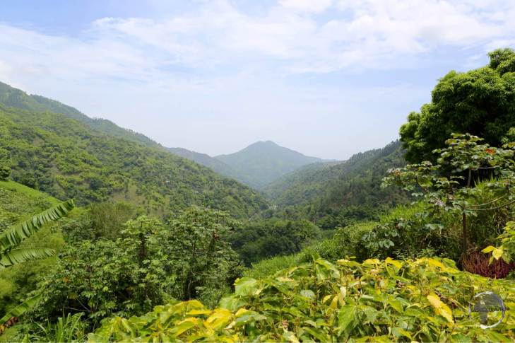 Blue Mountains, home to Jamaica's famous coffee farms.