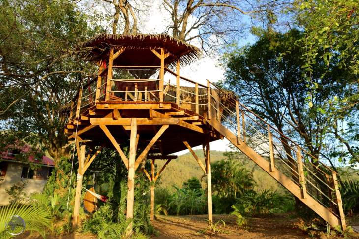 Guadeloupe Travel Report: Tree House accommodation near Marigot