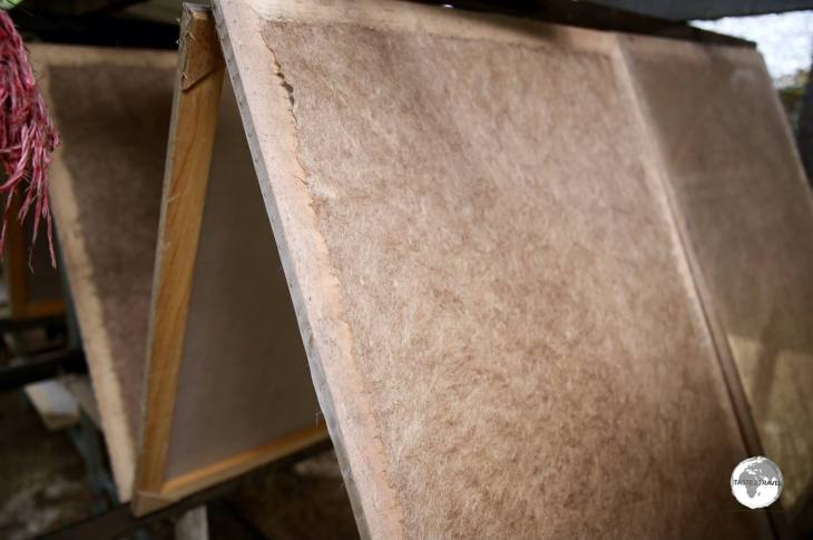 Step 4: The dried plant fibre is pulped with recycled paper and laid out to dry on wooden frames.