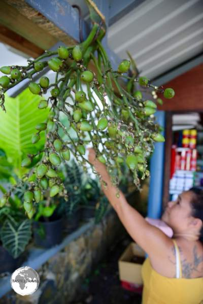 Betel-Nut for sale at a shop in Kolonia.