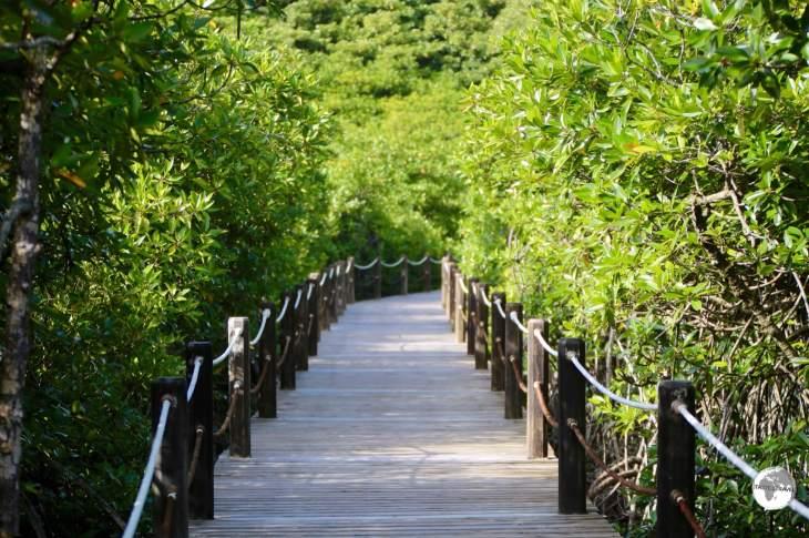 Palau Travel Report: Papago International Resort