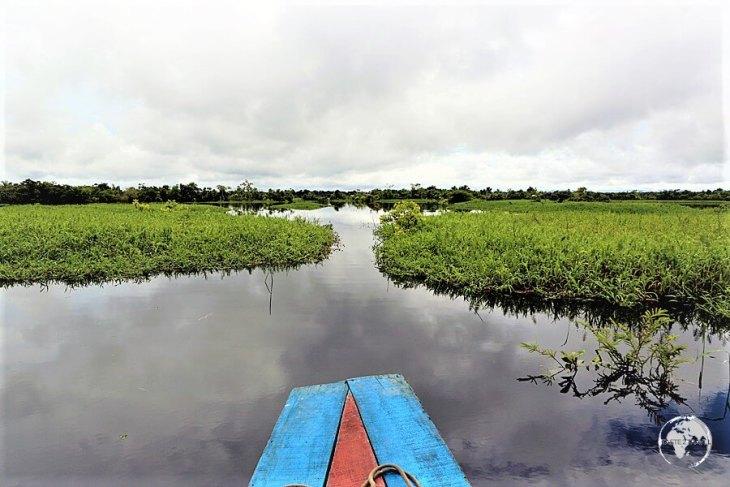 Exploring the Amazon river around Iquitos, Peru.