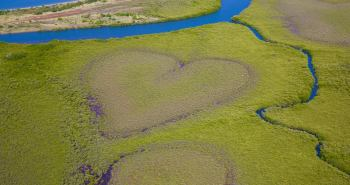 The 'Heart of Voh' is a naturally occuring heart-shaped bog inside a mangrove swamp.