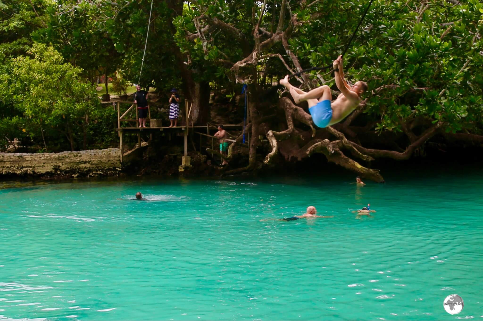 Blue Lagoon is a place to unwind and swing like a monkey!