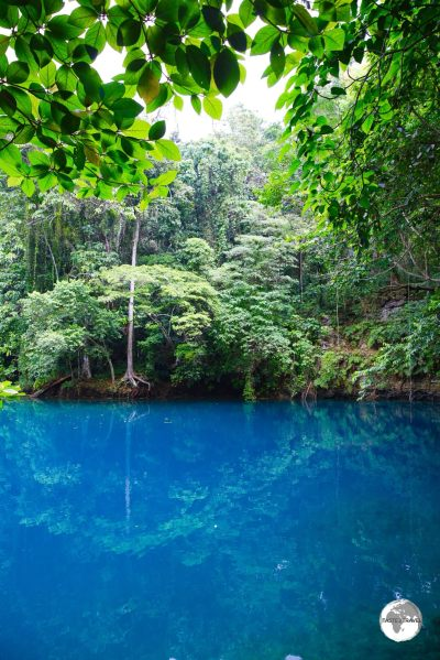 A perfect swimming spot - Riri blue hole, one of several such natural pools on Santo.