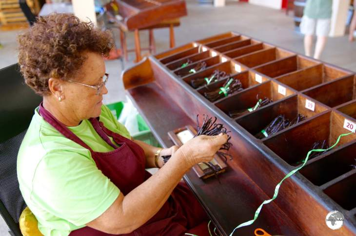 A worker at the Coopérative Pro Vanille sorting vanilla pods into different lengths.