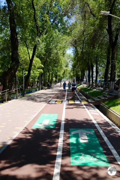 The flat and shady cycle lane which runs the length of Abay avenue.