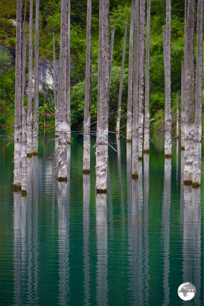 The eerie looking Lake Kaindy is famous for it's submerged forest.