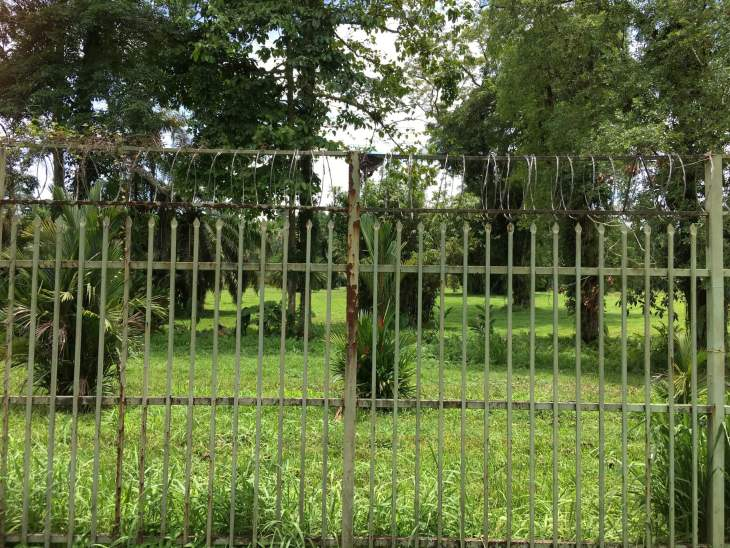 The Botanical Garden in Lae, which is guarded by a security guard, is completely surrounded by a security fence which is topped with razor wire.