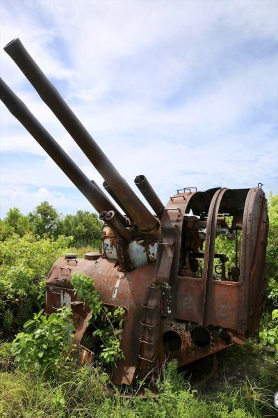 One of the Japanese WWII-era, double-barrelled anti-aircraft guns on Command Ridge.