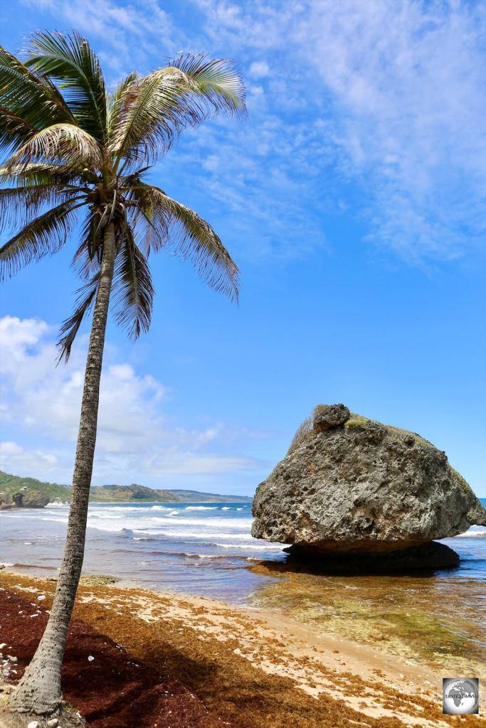 Bathsheba Beach, Barbados.