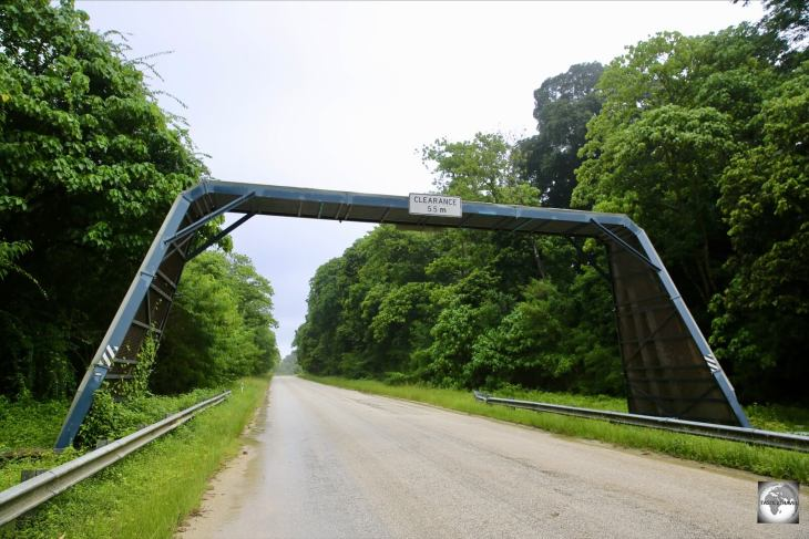 The Christmas Island red crab bridge is located on the main road, beyond the island's only high school.
