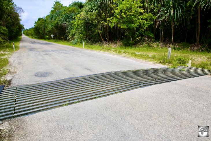 Cattle grids on an island with no cows! Grids on Christmas Island allow for red crabs to pass safely under the road.