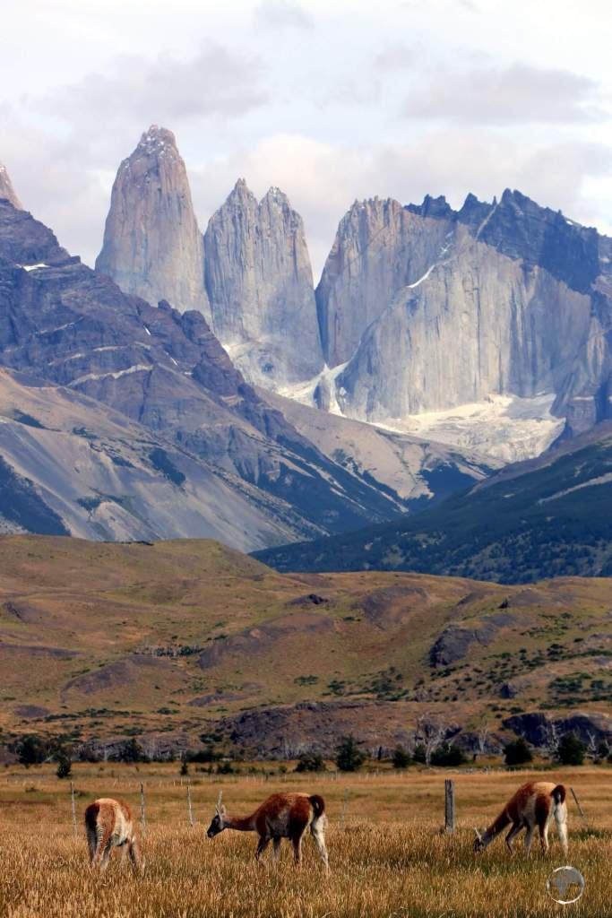 The landscape of the Torres del Paine National Park is dominated by the Paine massif, which is an eastern spur of the Andes.