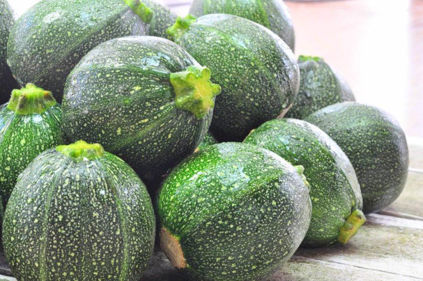 zucchini_closeup