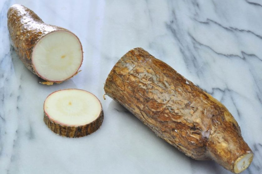 Cassava_Tastecelebration_1