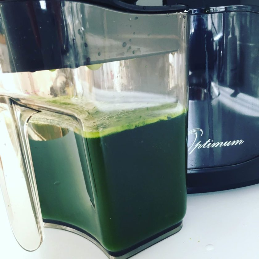Froothie_optimum_slow_juicer