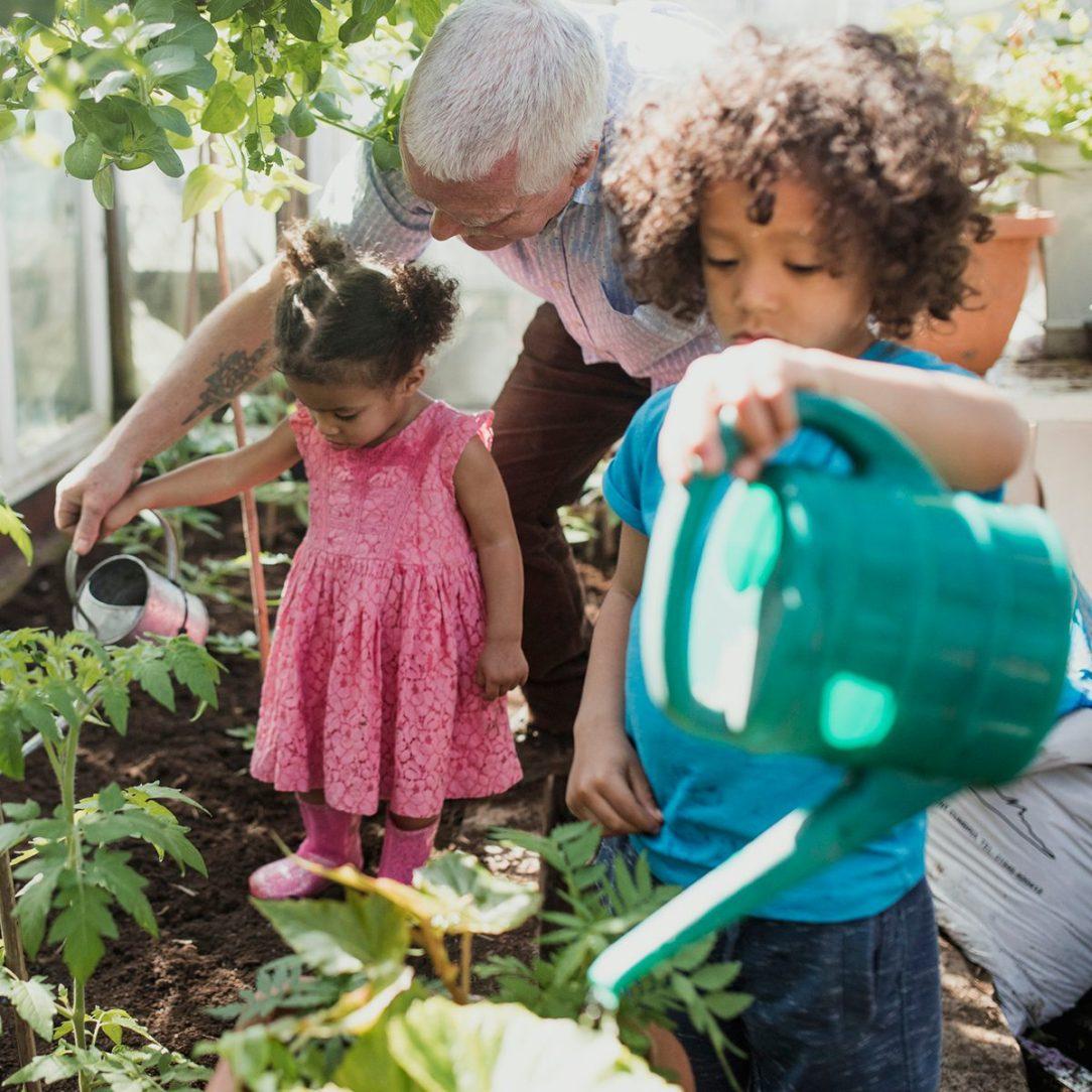 Senior man is teaching his grandchildren how to do gardening in his greenhouse.