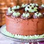 grasshopper-mint-chocolate-cake-recipe
