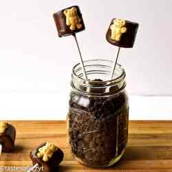 These Teddy Graham S'more pops will be a hit with your little kids! No campfire needed- these no-bake treats are quick and easy.