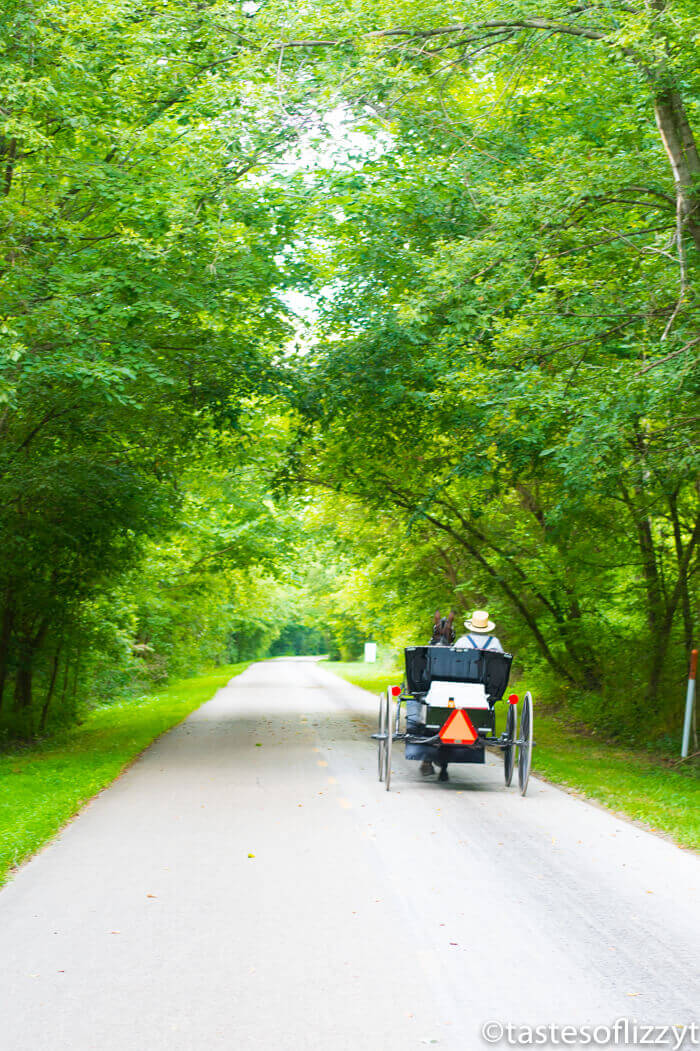 Ohio Amish Country: A Weekend Getaway for Couples & Families