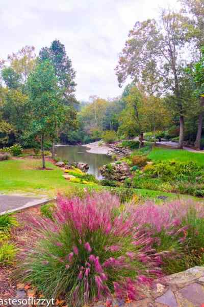 Visiting Greenville South Carolina