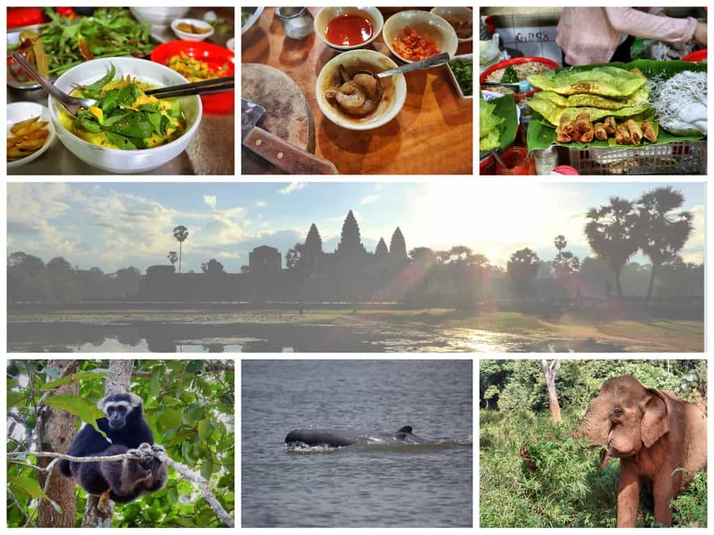 cambodia wildlife culture & cuisene