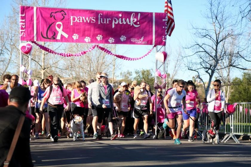 Starting line of racers at Pars Fur Pink