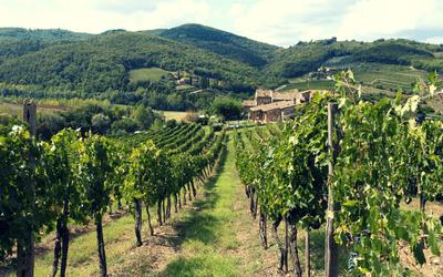 Tuscany Food & Wine Tour - Day 2 Chianti