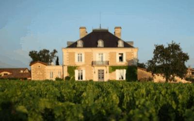 Bordeaux Food & Wine Tour - Château Haut Bailly