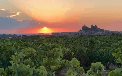 Spain Wine and Food Vacation