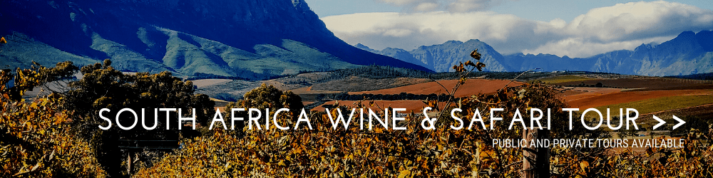 South Africa Wine & Safari Tour